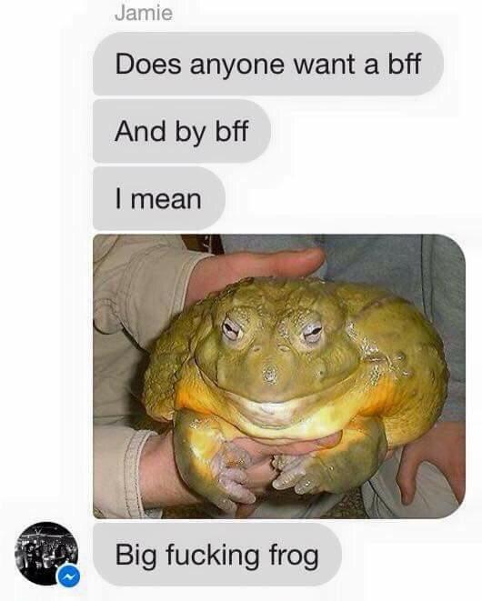 I need a bff - meme