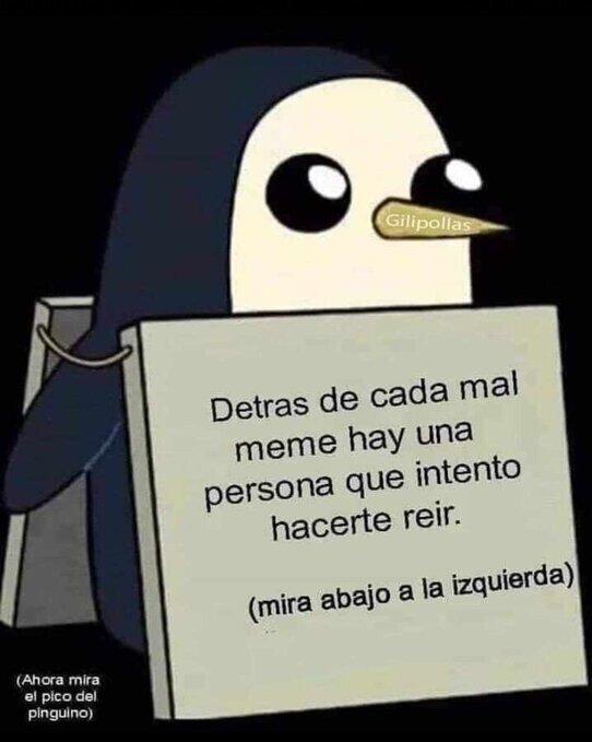 El pingüino tiene un mensaje para tí - meme