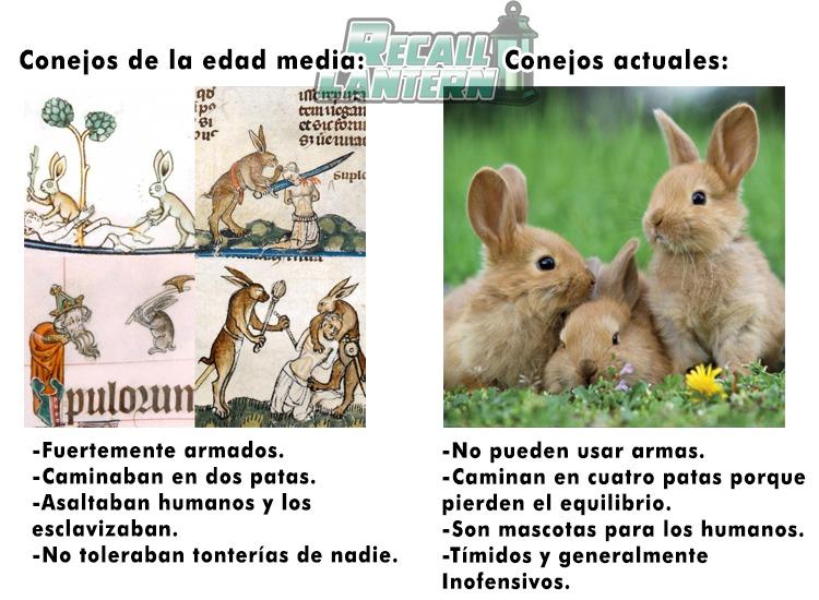 ¡Que bonito mi conejo! - meme