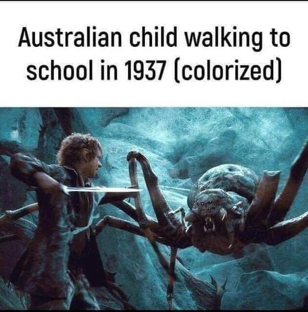 Australian child walking to school in 1937 - meme