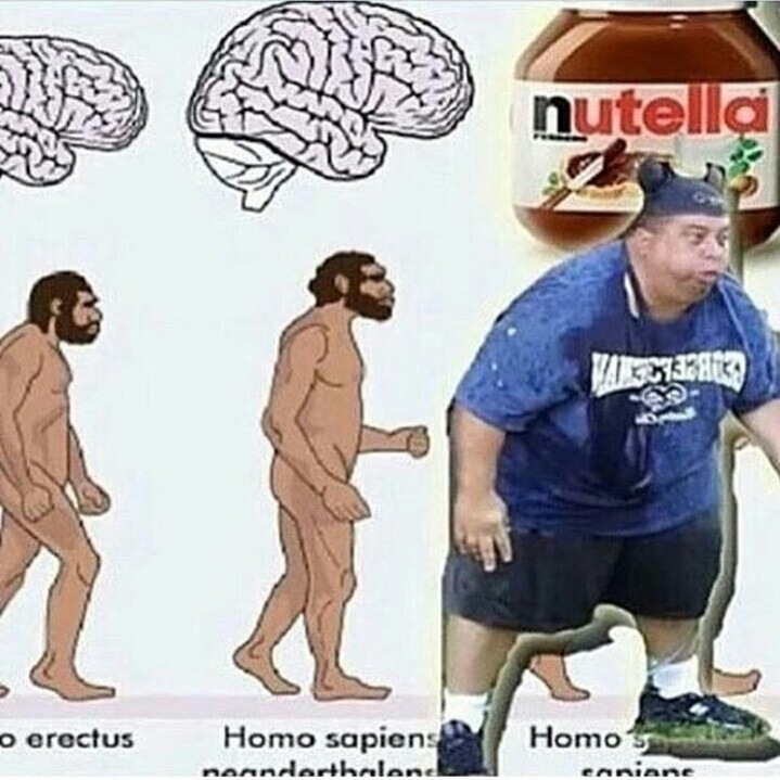Human Evolution - meme