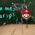 A diferença entre eu e o mosquito é.....