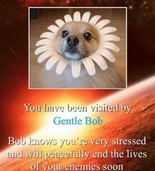 You have been visited by gentle bob - meme