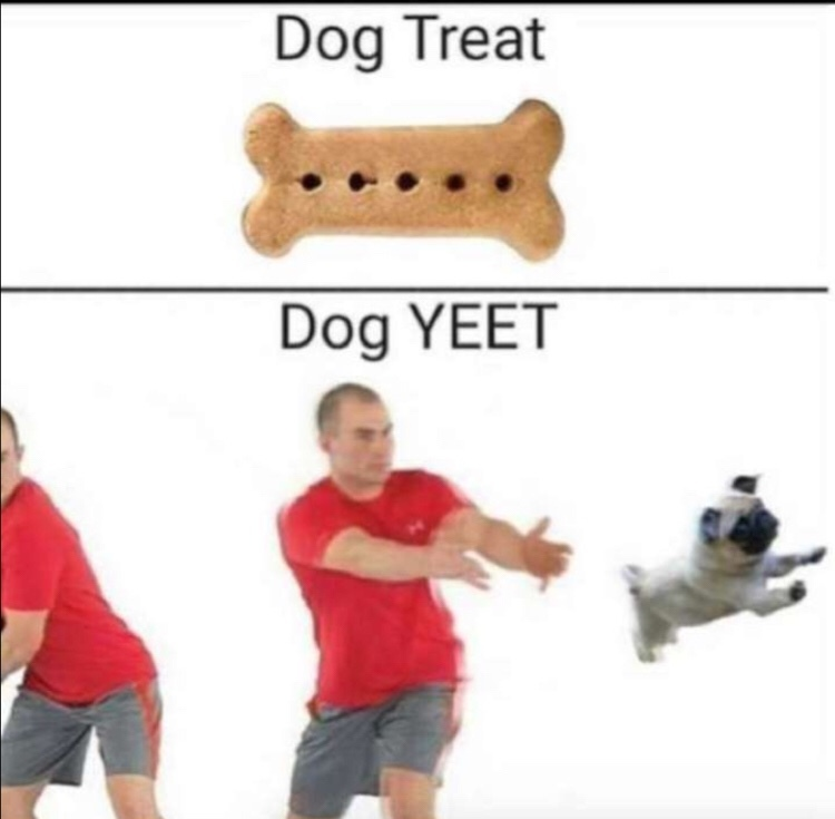 YEEET - meme