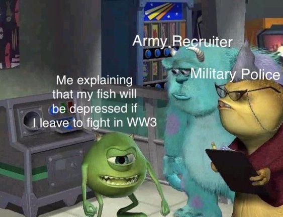 .....m - meme