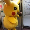 Pikachu trabalhador comeu o ash