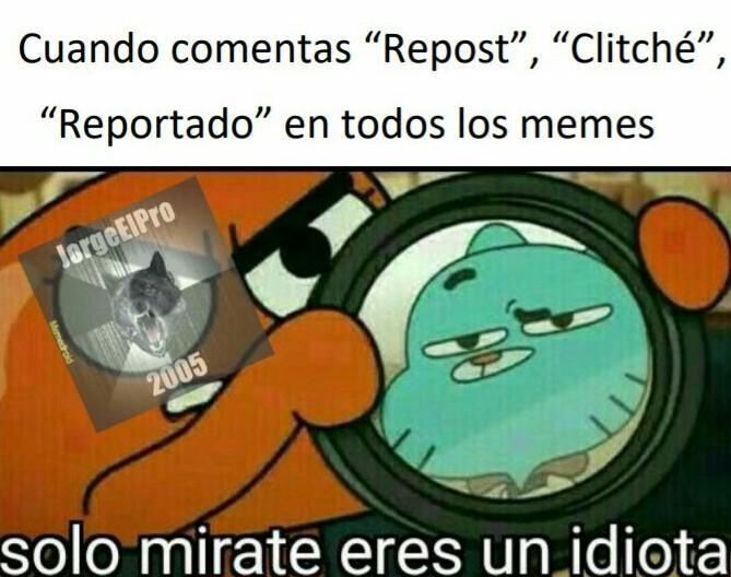 Estupido - meme
