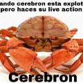 Cerebron