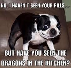 this dog - meme