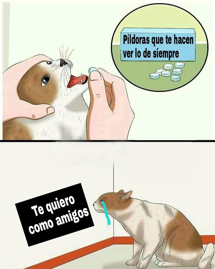 Esa píldora es mi droga ;u; - meme