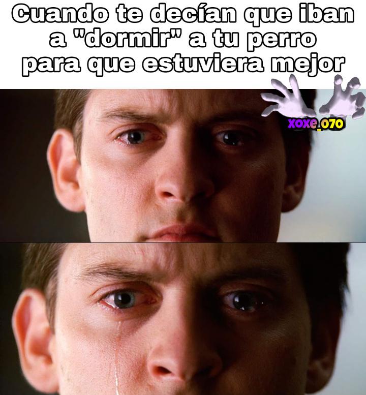 NOOOOOOO POR LA CONCHETUMARE - meme