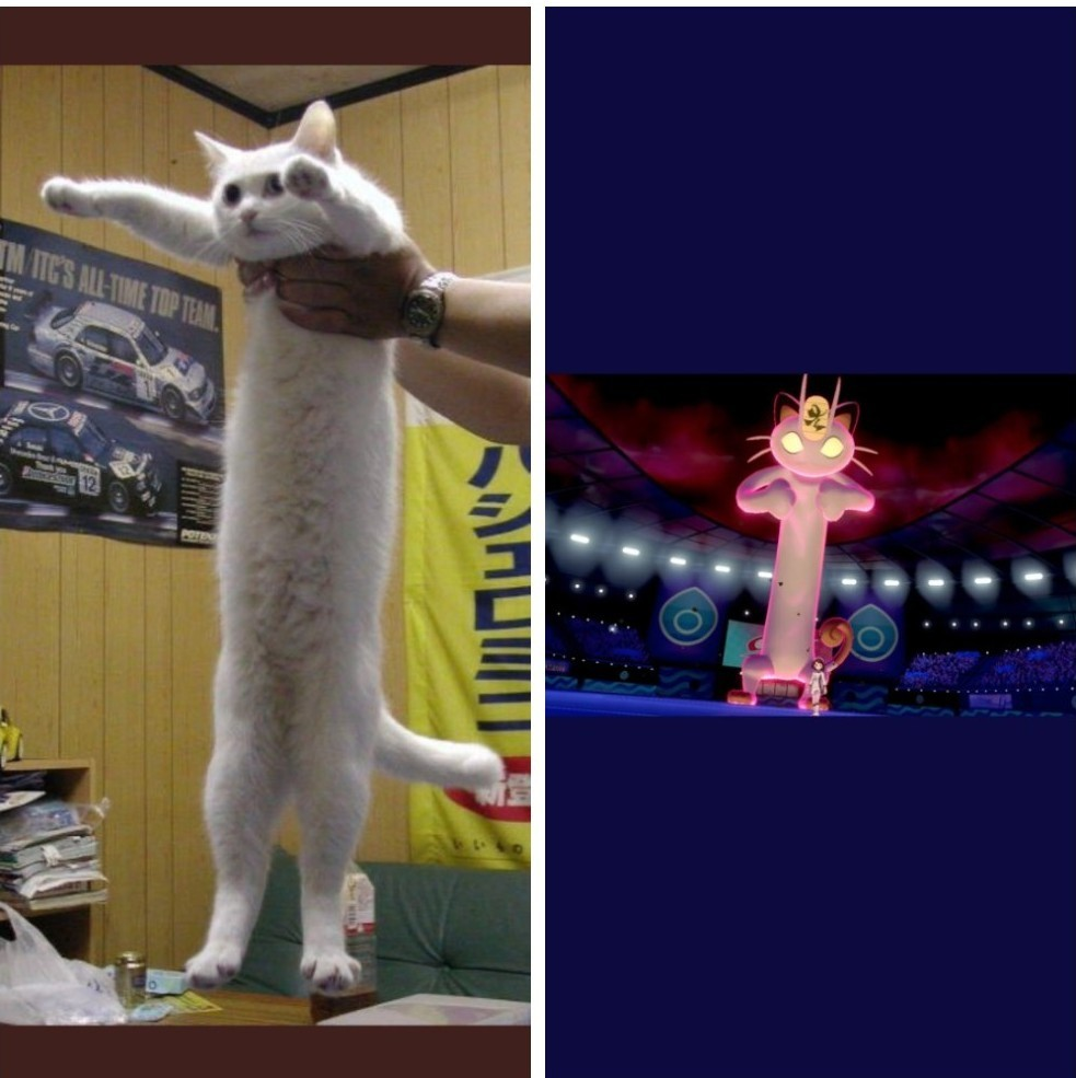 Sim , esse é o Meowth , e sim , ficou uma bosta - meme
