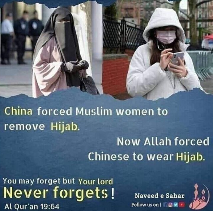 dongs in a hijab - meme