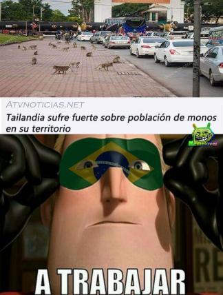 Brasileños xd - meme
