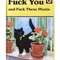 Memes de gatos. No  11;Publicación del Michi