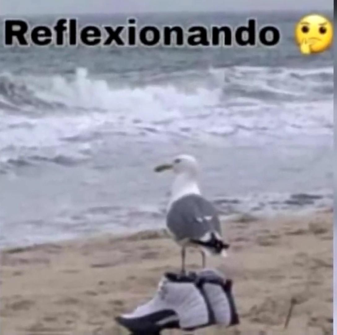 Reflexion - meme