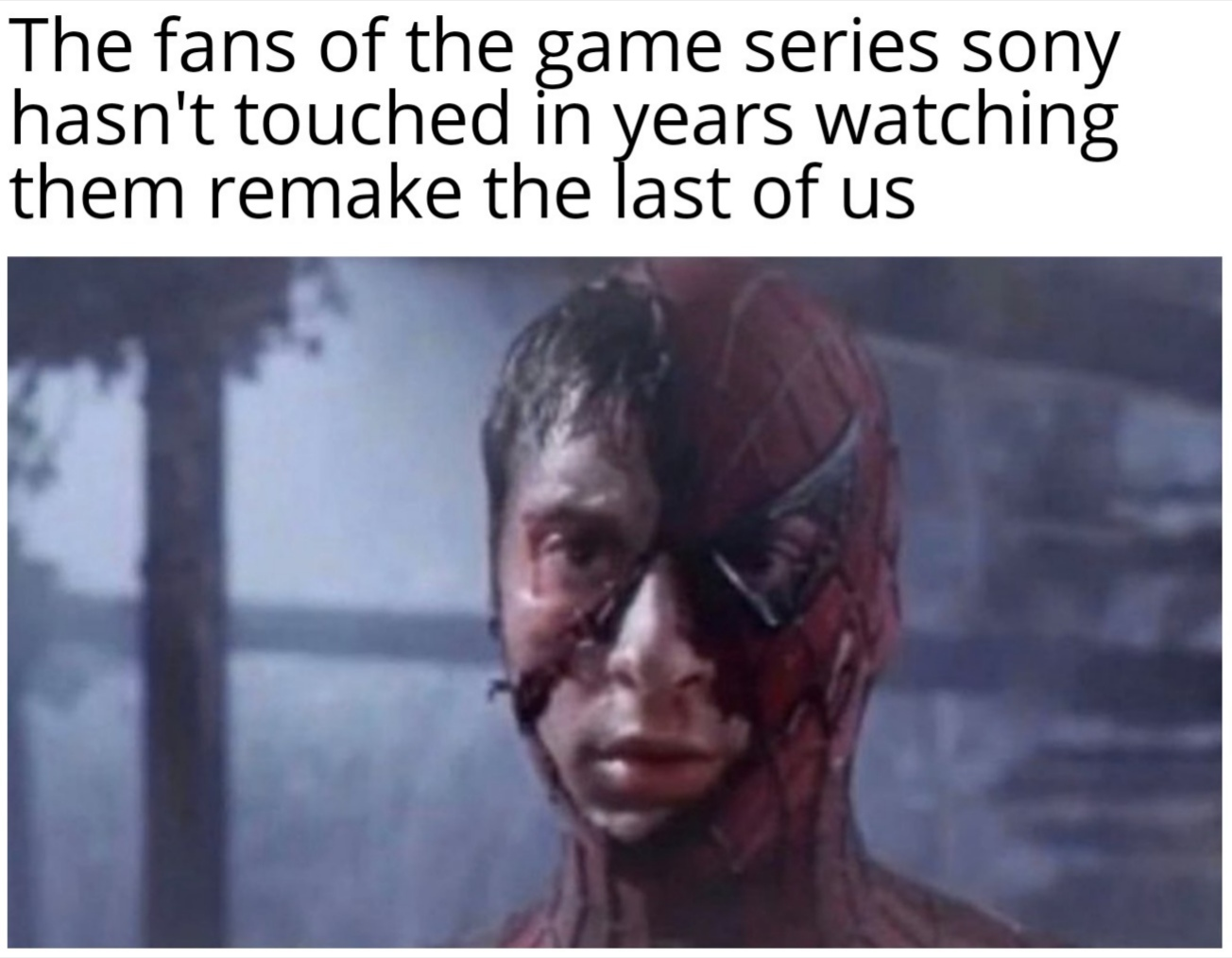 Smh Sony only wants game of the year contenders - meme