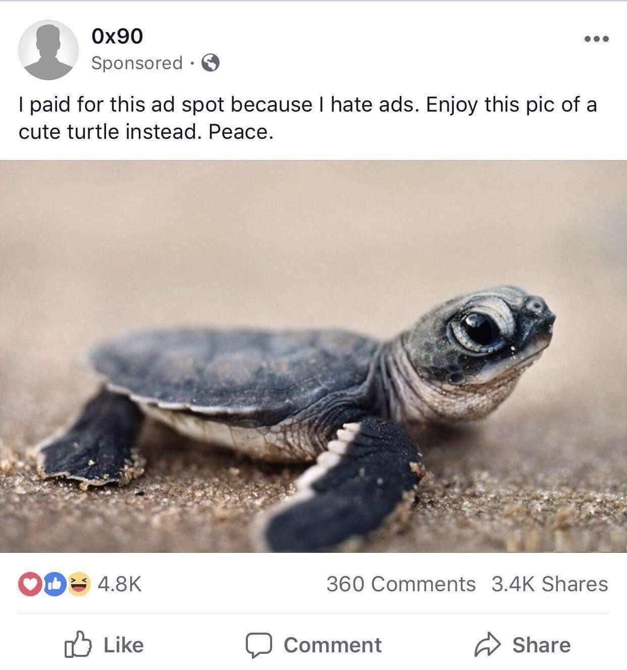 Not all heroes wear caps - meme