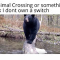 Bears are scary