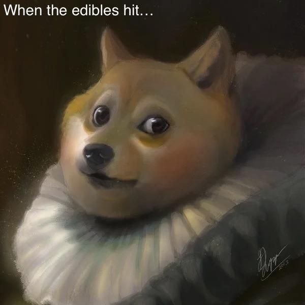 Maybe I am a Doge - meme
