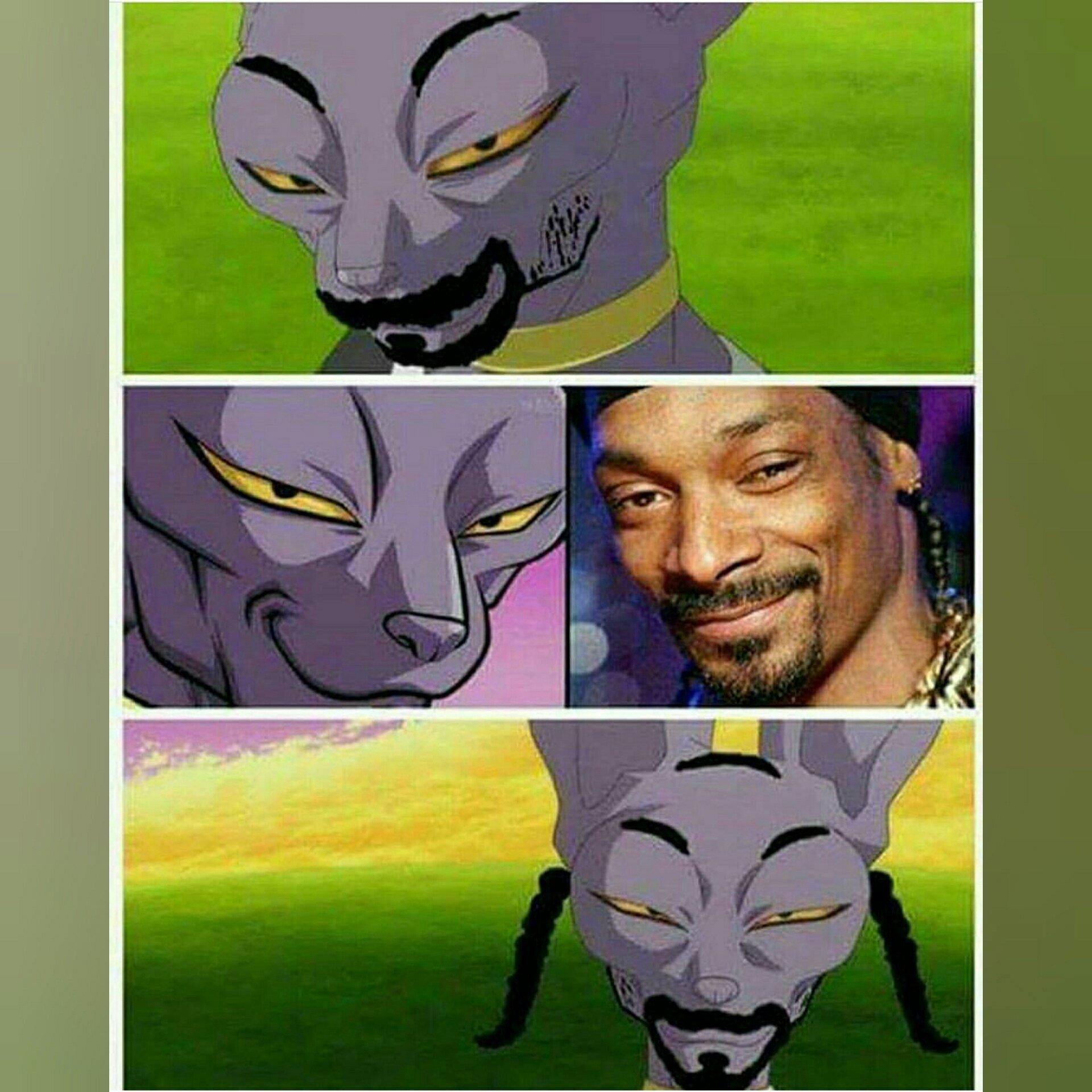 Snoop Cat? :v - meme