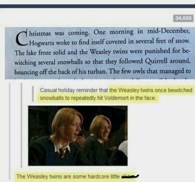 The Weasleys - meme