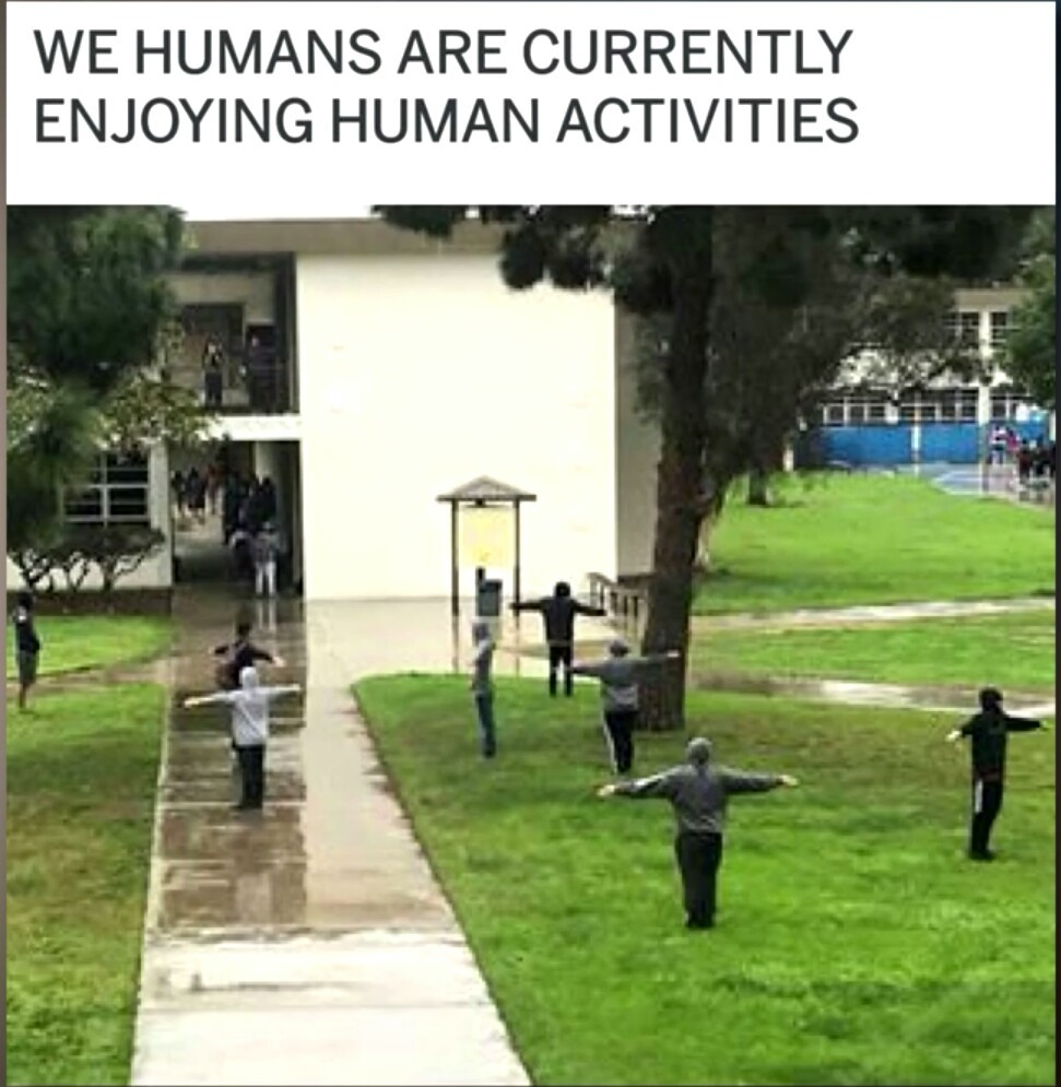 Normal humans - meme
