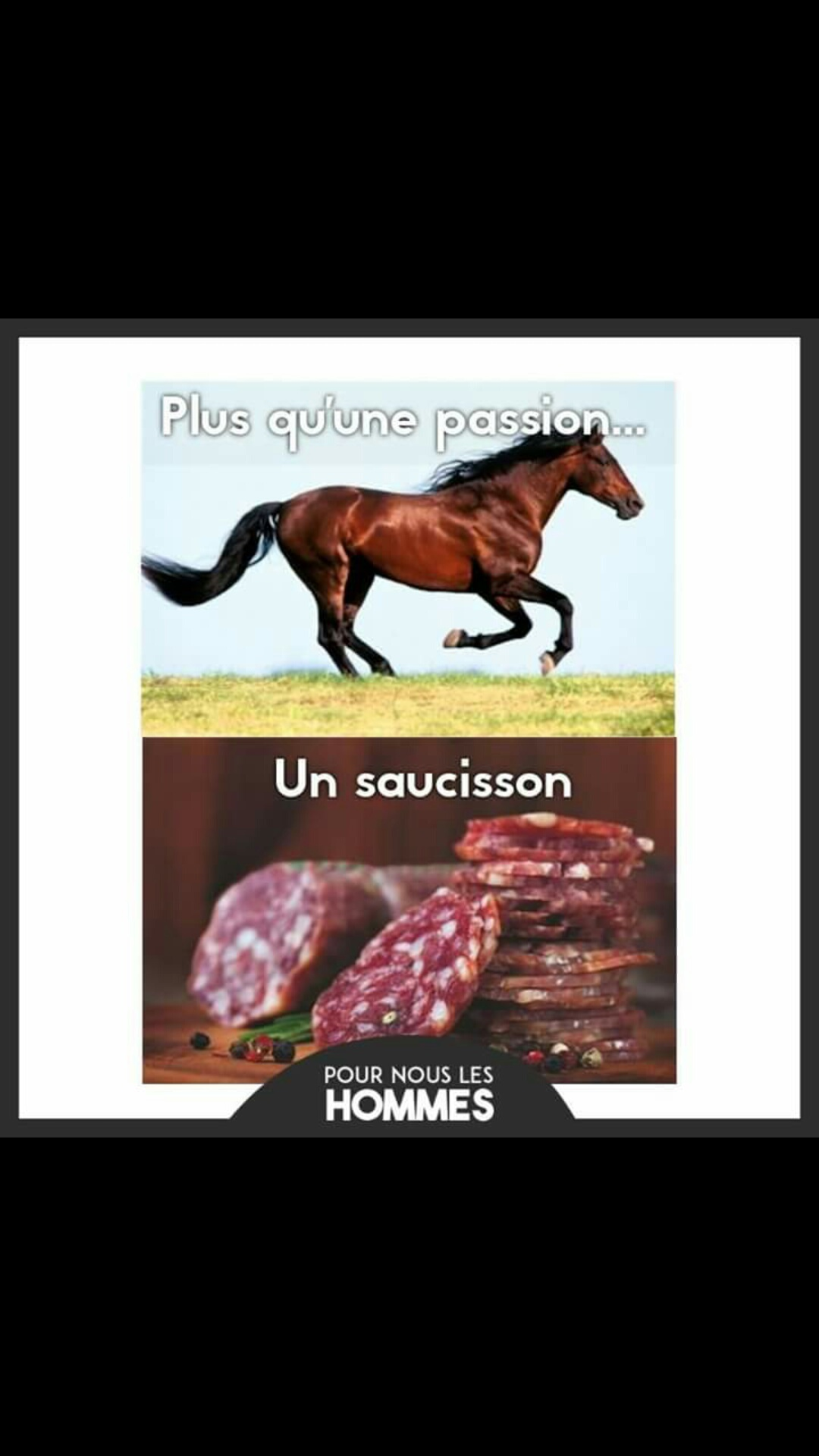 Saucisson de cheval - meme