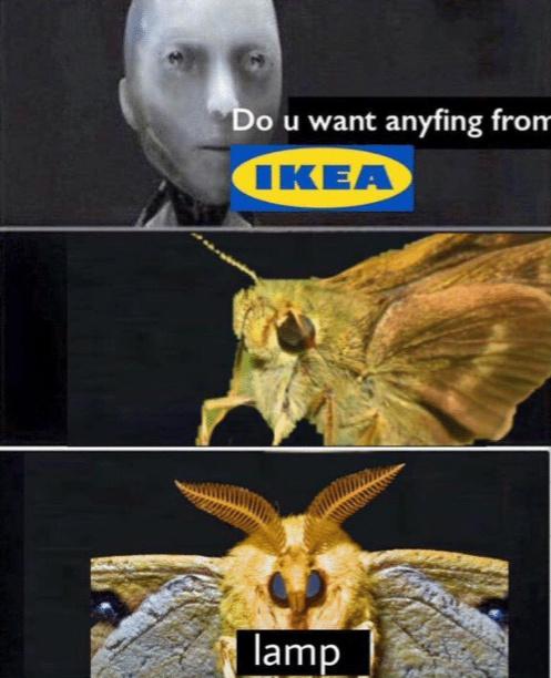 Ikeä Lämp - meme