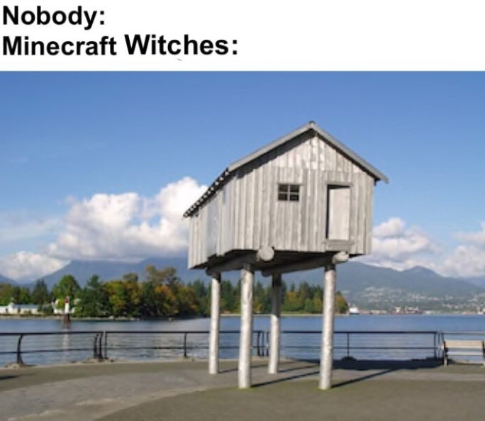Witches be snitches - meme