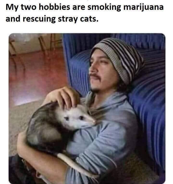Marijuanas - Not Even Once. - meme