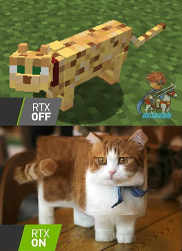me gustaría tener un gato como el de abajo - meme