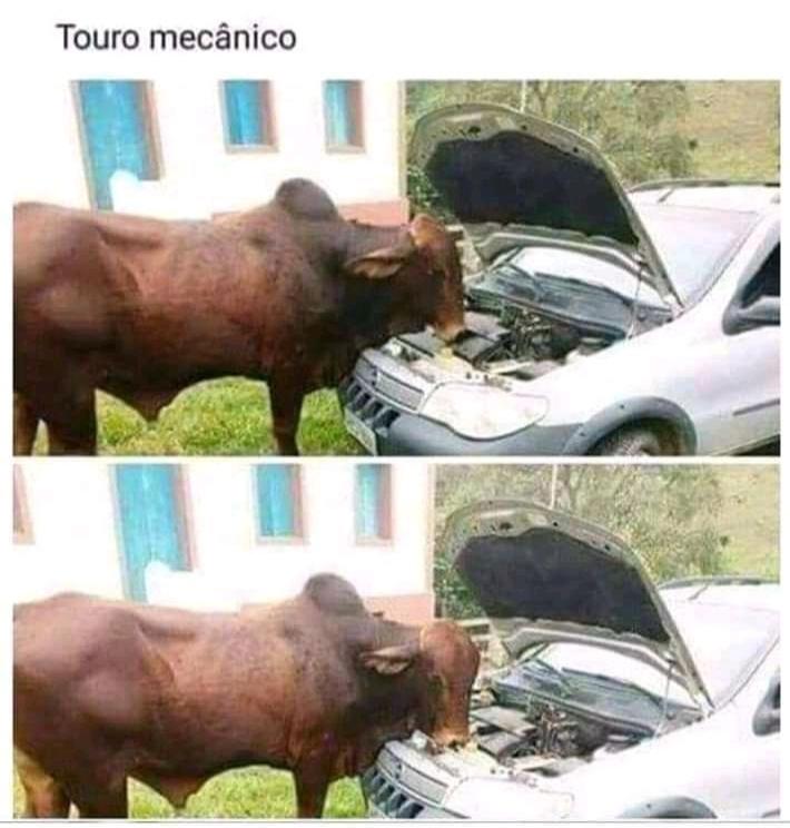 Aí a morena pede pra vc consertar o carro dela - meme