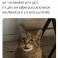 Pinche gato