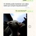 La cabra