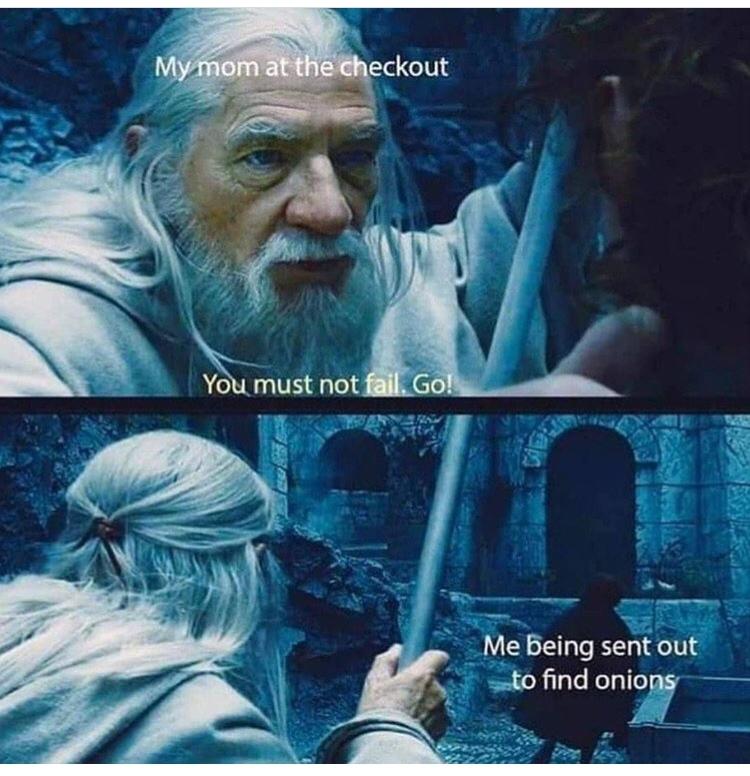 ONIONS - meme
