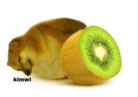 kimwi - meme