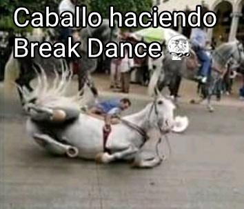 Caballo break dance ❤ - meme