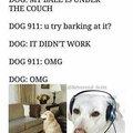 Dog God Dawg