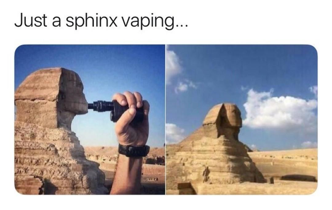 Fag Sphynx - meme