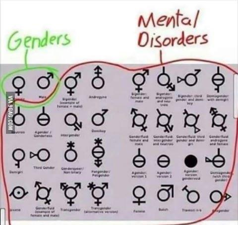 2 genders!!!! - meme
