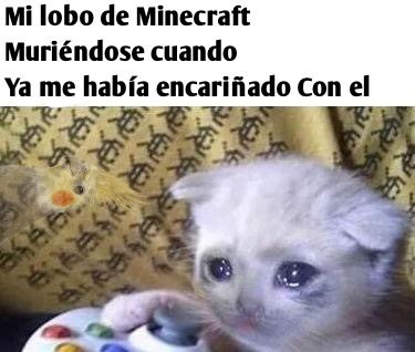 :,( no - meme