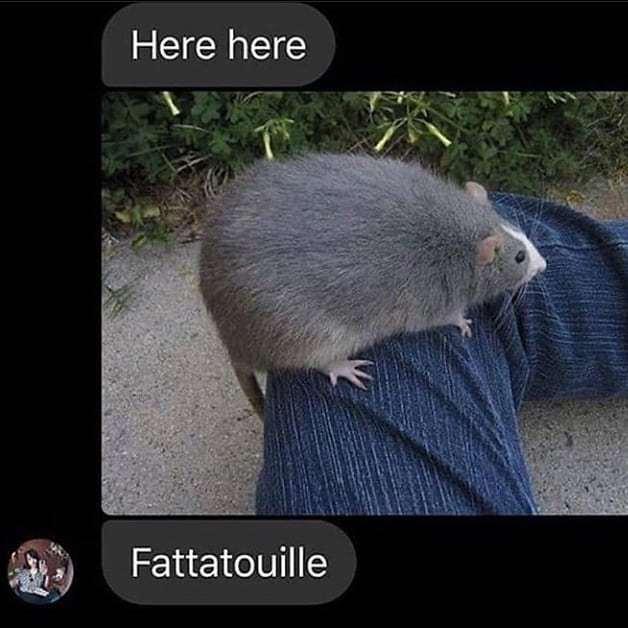 Fatatouille - meme