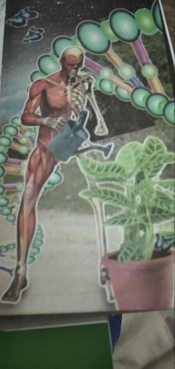 Del 1 al 10, ¿Qué tanta confianza inspira esta portada de un libro de biología? - meme