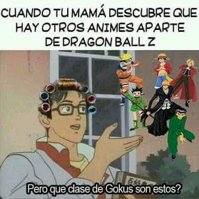 Cocus - meme