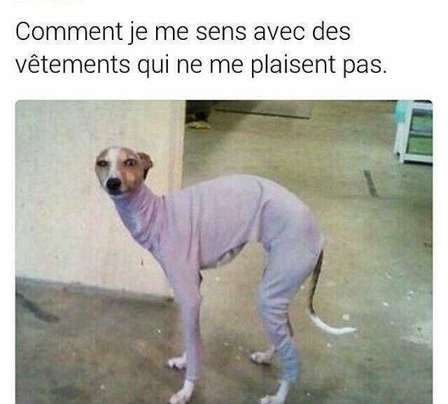 vêtements - meme