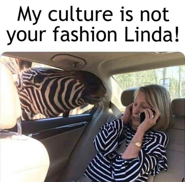 Zebra lives matter ! - meme