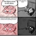 god damnit brain no again