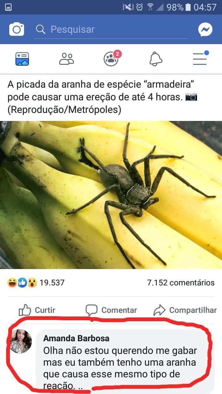 Bela aranha - meme