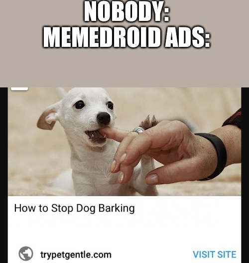 Dogos - meme